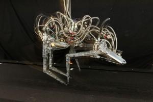 robot-gepard